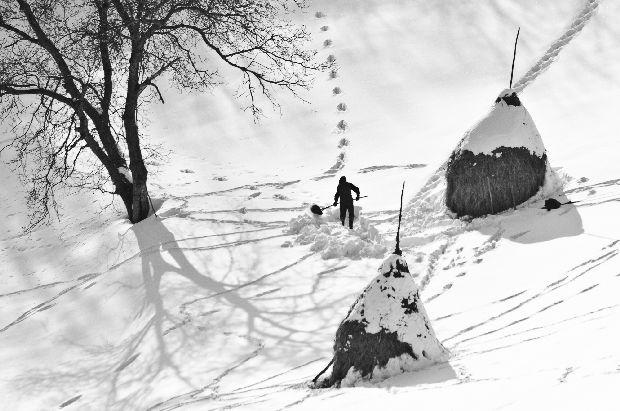 22 de poze deosebite pe tema Romania rurala