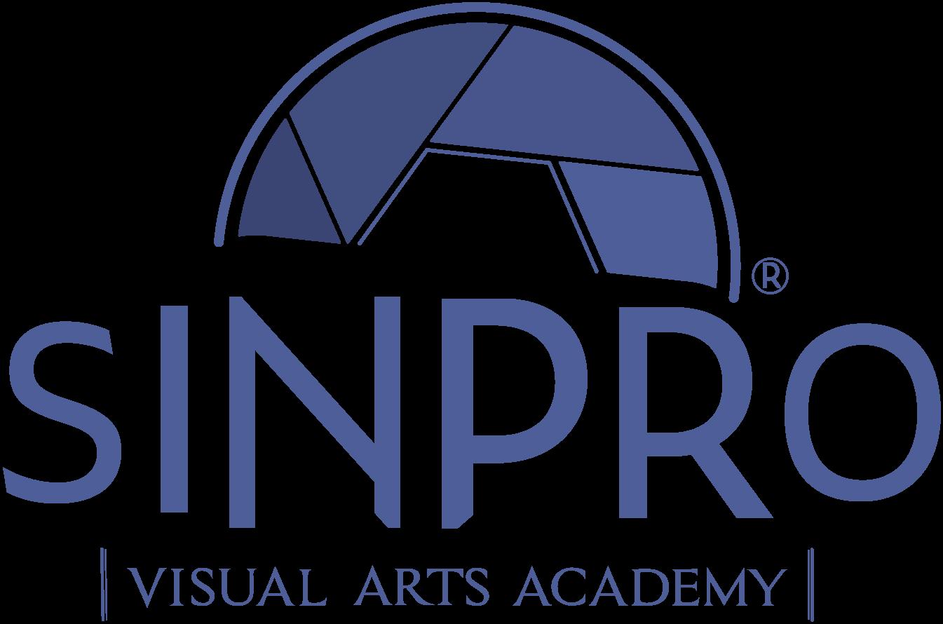 Cursuri fotografie, videografie și grafică în Timișoara la SinPRO