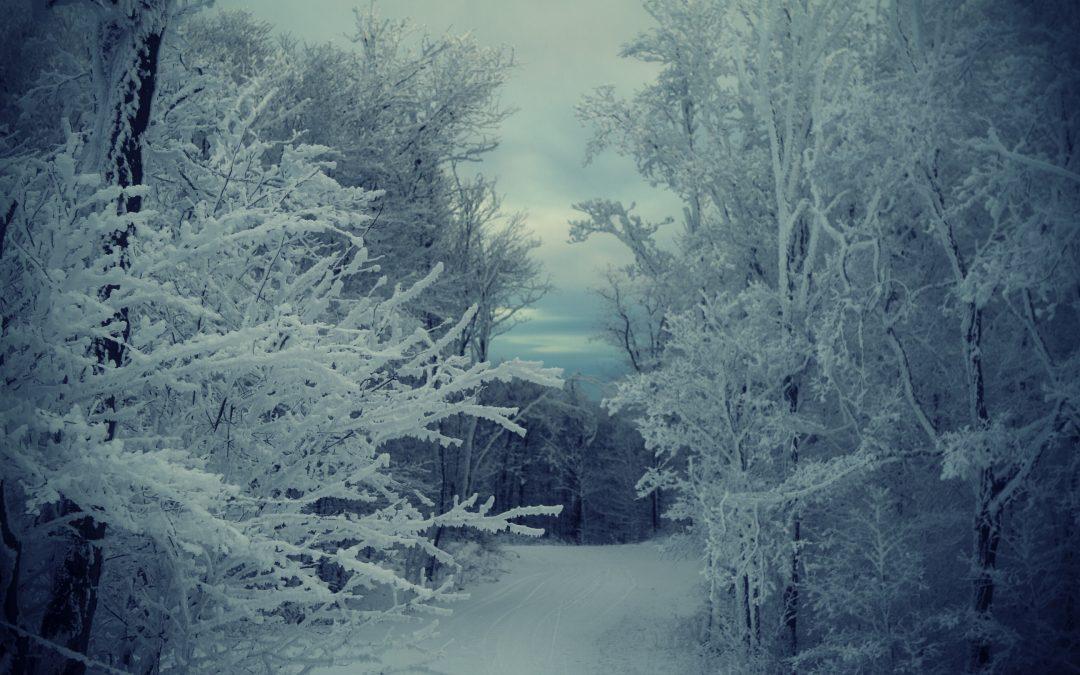 Cum setezi aparatul foto în condiţii de zăpadă?