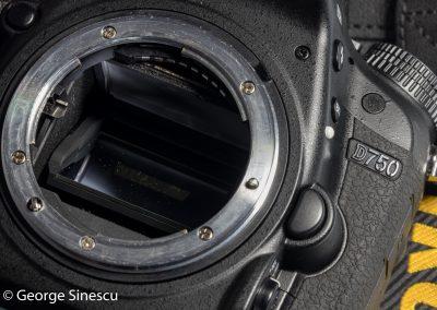 2017.03.02 Nikon D750 cu senzorul zgariat-11