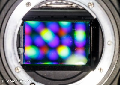 2017.03.02 Nikon D750 cu senzorul zgariat