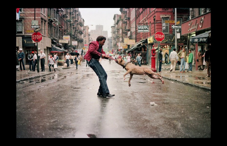 SinPRO Recomanda: Everybody Street