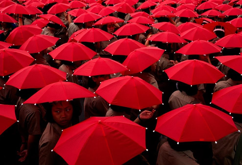 red-umbrellas-cobb-sinpro